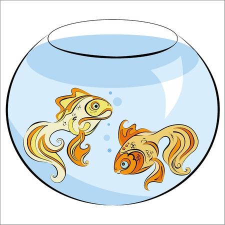 carassius auratus: Illustration of two stylized Golden fish in the aquarium Illustration