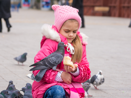 The girl was frightened brazen pigeon who jumped into his arms for a crust of bread Stock Photo
