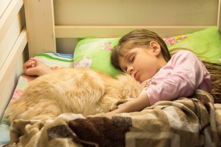 Little girl sleeping in bed with fluffy cat