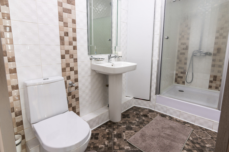 The interior of the toilet and bathroom with shower