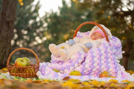 The baby sleeps in a basket in the autumn forest, next to a basket of apples