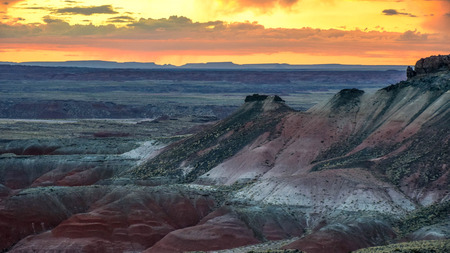 Petrified Forest National Park is in northeastern Arizona. The Rainbow Forest is full of colorful petrified wood. In the park's center are the petroglyphs of Newspaper Rock.