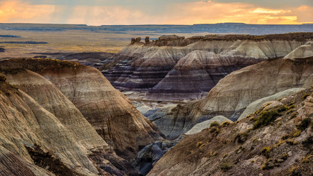 Petrified Forest National Park is in northeastern Arizona. The Rainbow Forest is full of colorful petrified wood. In the parks center are the petroglyphs of Newspaper Rock.