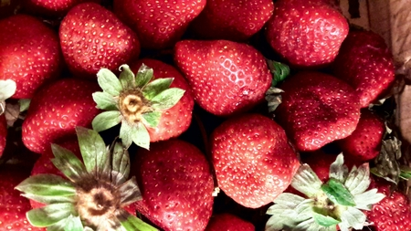 gastro: Fresh Strawberry