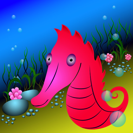 seaweeds: Red seahorse and seaweeds under water. underwater life with sea creatures for your design .....