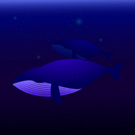 twain: Two whales swimming in the ocean. the biggest fishes whales swimming under water