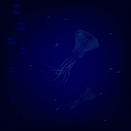 outgrowth: Transparent jellyfishes swim in deep underwater. dangerous jellyfishes hunted for little fishes