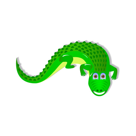outgrowth: Single crocodile on white background. kind and happy crocodile for your design