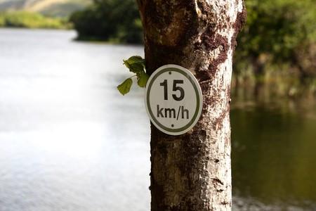 SpeedLimit-Zeichen auf einem Baum mit Bl�ttern und Lake im Hintergrund Lizenzfreie Bilder