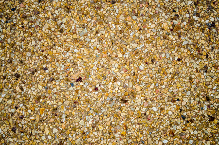 background of fine sandy shell close-up