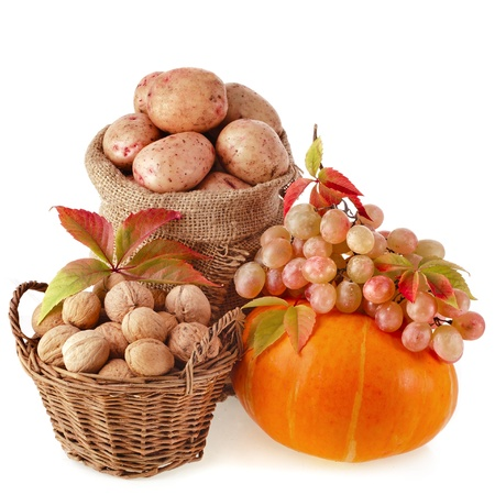 autumn fruits and nuts isolated on white background photo