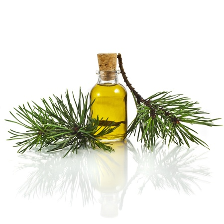 essence: Bottle of fir tree essential oil isolated on white background close up