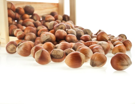 nit: hazelnut filbert on wooden crate isolated on white background