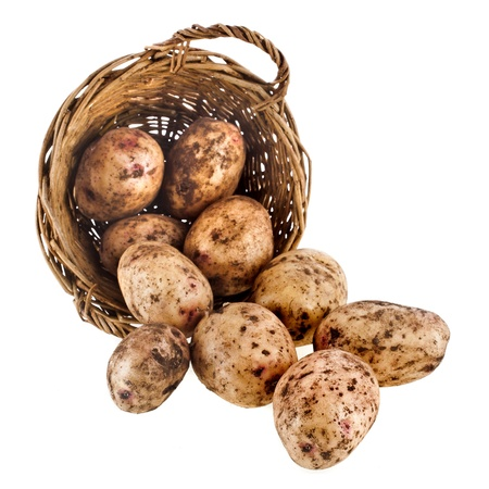 fresh potatoes in a wicker basket isolated on white background photo