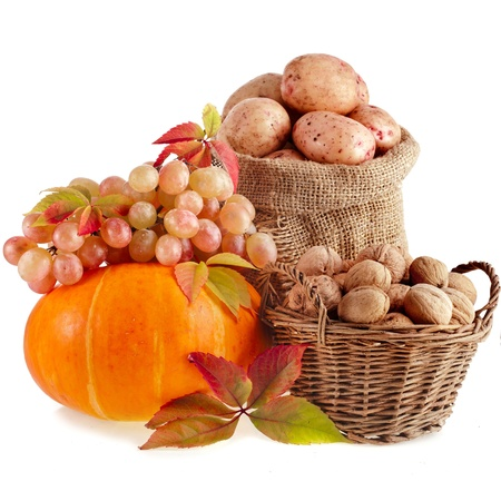 autumn fruits and nuts background isolated on white photo
