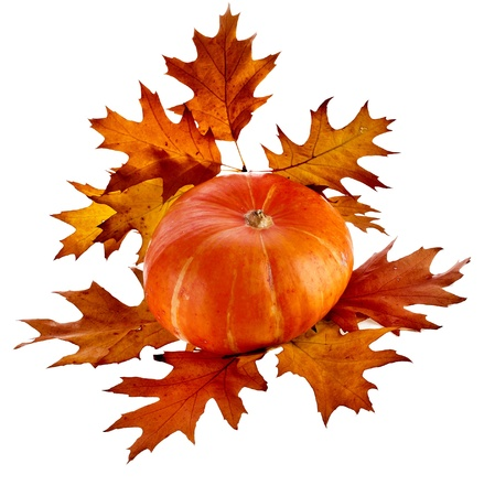 Pumpkin decoration with Colorful autumn fall leaves  isolated on white background photo