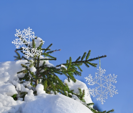 Fir branches in the snowdrift with Christmas snowflake against the blue sky photo