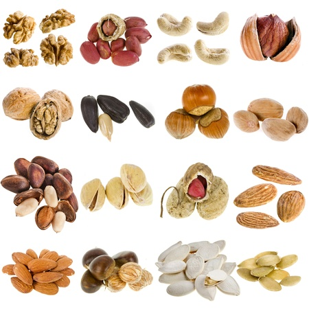 ground nuts: large collection of nuts, seeds isolated on a white background