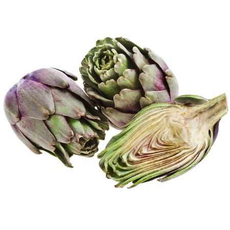 fresh artichoke on a white background photo