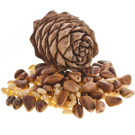 cedro: cedro conos de pino con frutos secos aislados sobre fondo blanco Foto de archivo