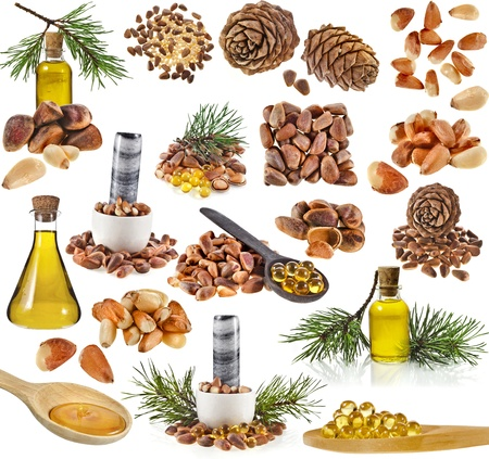 siberian pine: Collection set of cedar pine cones , nuts , oil glass bottle , isolated on white background Stock Photo