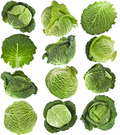 savoy: Savoy Cabbage head , collection set ,Isolated on White Background