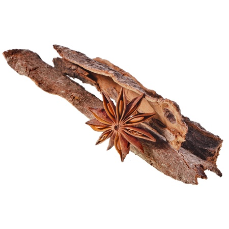 anice: cinnamon bark sticks with star anise isolated on white background Stock Photo
