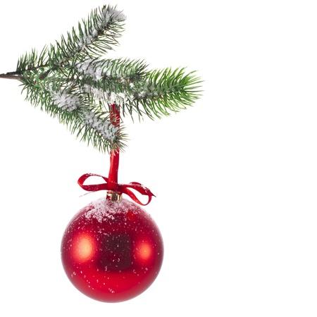 fir twig: Red Christmas ball with fir twig