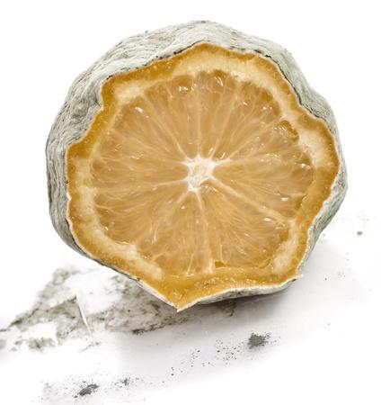 moldy lemon isolated over white background photo