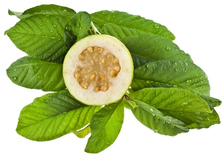 guava: fresh guava fruit with green leaves isolated on white background Stock Photo