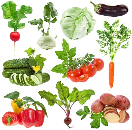 vegetables big collection set isolated on white background photo