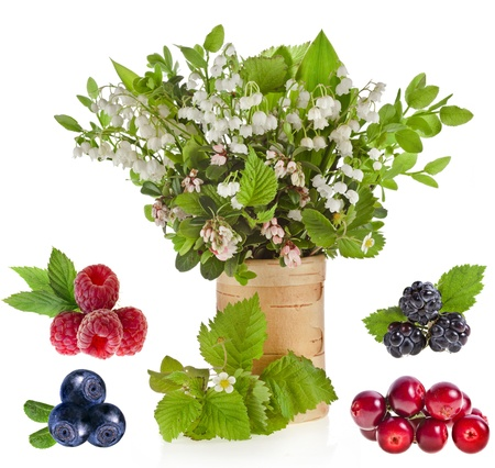 mayflower: Collection set of bouquet of lilies-of-the-valle on birch vase and pile heap fresh berries