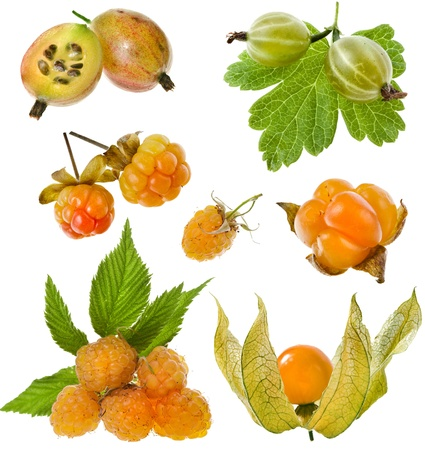 Collection set of sweet yellow berries   gooseberry, cloudberry, raspberry,physalis isolated on white background  photo