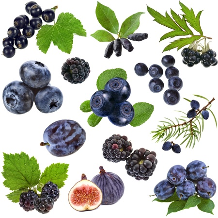 Collection set of blue purple black berries and fruits collection , isolated on white background  photo