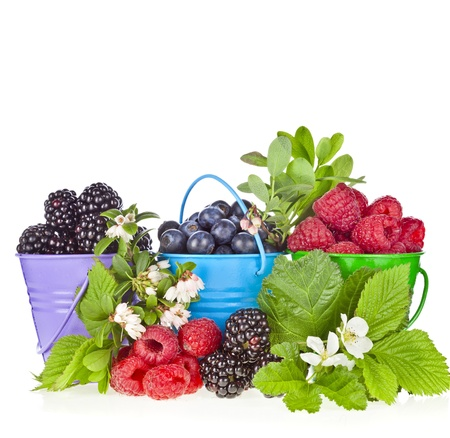 bramble: forest berries in color buckets with flowering branches background Stock Photo