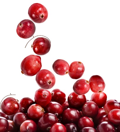 cranberry: cranberry fall isolated on white background  Stock Photo