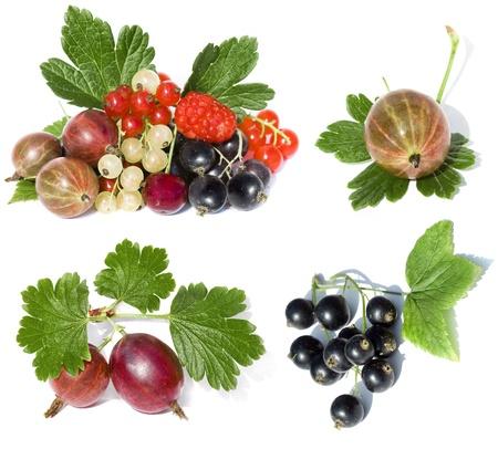 grosella: conjunto de recopilación de frutas rojas maduras, aislado en un fondo blanco