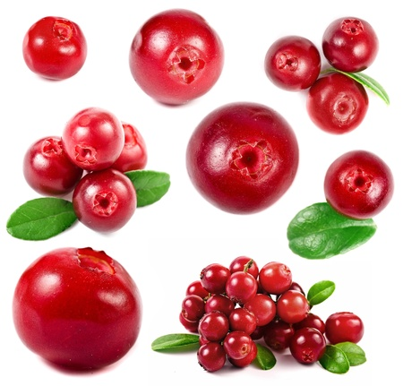 collection cranberries isolated on white background