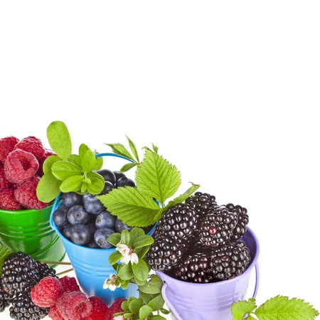 bramble: Border of tasty juicy berries in buckets isolated on white background