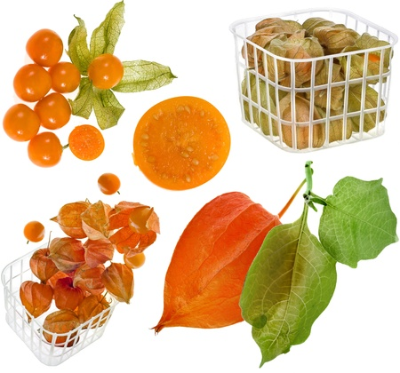 cape gooseberry: collection set fresh physalis on white background