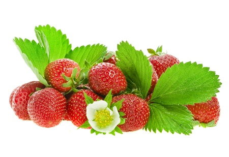 fresh strawberry fruits with flower and green leaves isolated on white background photo