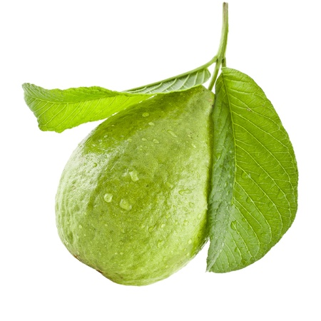 guava fruit: guava fruit with leaves isolated on white background Stock Photo