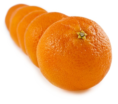 row of orange tangerines close up macro shot isolated on white background photo