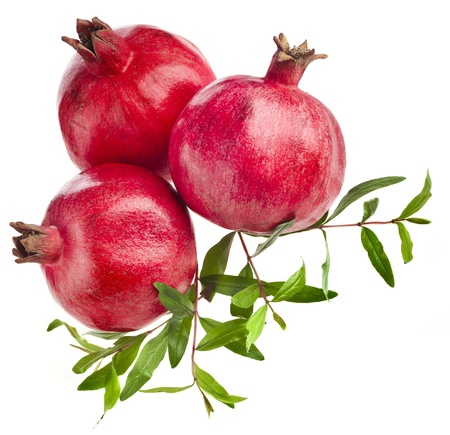 Pomegranate fruits with green leaves photo