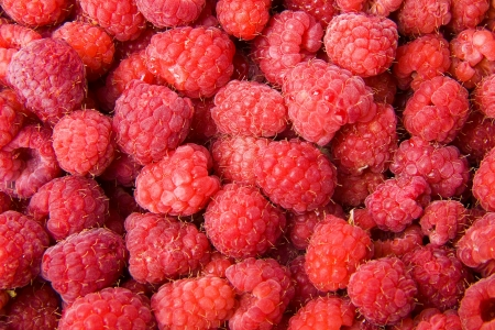 background of raspberries photo