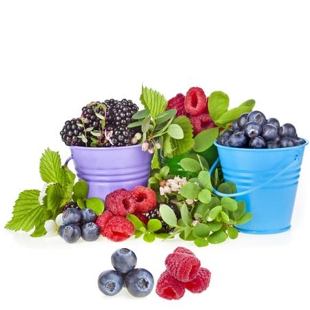 diversi frutti di bosco in secchi colorati con rametti fioriti di frutti di sfondo Archivio Fotografico