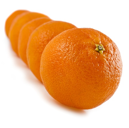 row of orange tangerines isolated on white photo