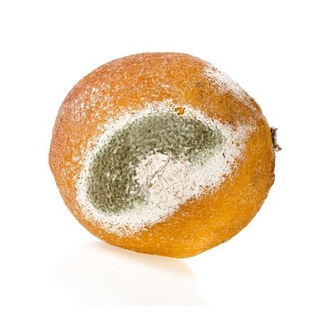 moldy lemon texture isolated over white background