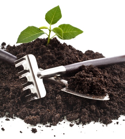 compost: gardening tools and seedling in soil isolated on a white background Stock Photo