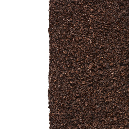 Close up of organic soil border isolated on white background Stock Photo - 20134296